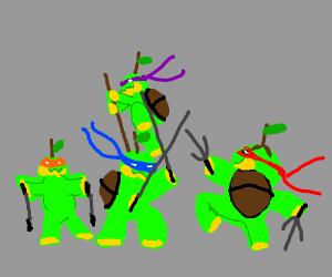 Teenage Mutant Ninja Turtwigs
