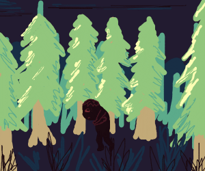 Boy lost in a forest