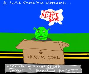 Step 4: Adopt shrek