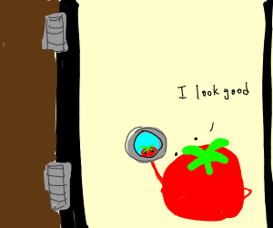 tomato in a doorway looking in a mirror