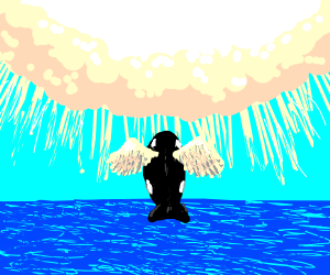 Angel orca going to heaven