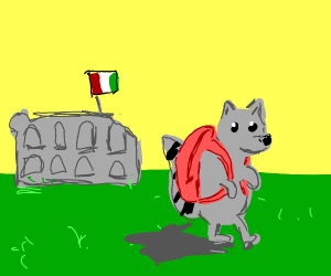 Raccoon with backpack walks away from Rome