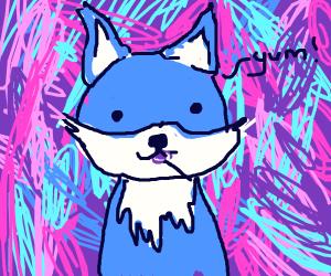 blue fox enjoys lollipop