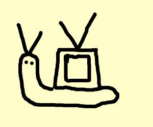 TV Snail