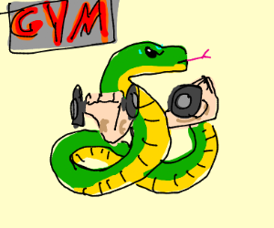 Snake working out at the gym with big muscles