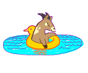 Goats swimming