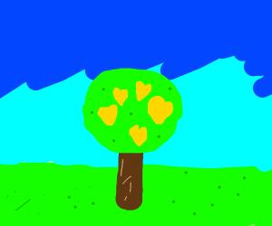A LOVELY lemon tree