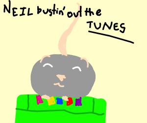 Neil the rat