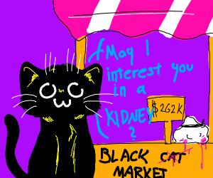 Black market cat