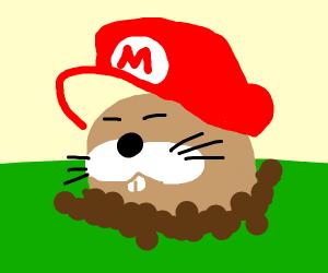 mario groundhog