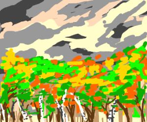 automn landscape