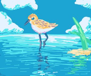 A wading bird chick learns to swim