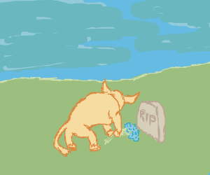 A bull mourns someone and lays a bouquet down