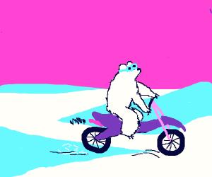 super rad polar bear on a motorbike