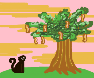 the cat and the bacon tree