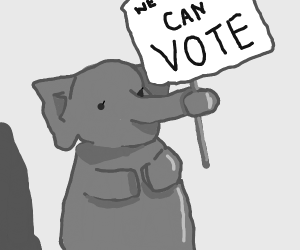 Elephant protesting for Elephant Rights