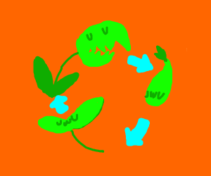 tHe CirCLe oF a pLANt liFE UWU