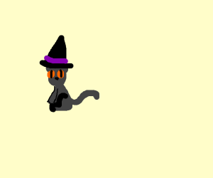 WIZARD KITTEN