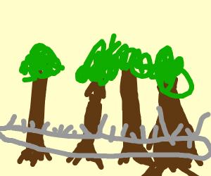 Swastika saw! Cut 4 trees at once!