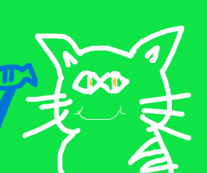 a happy cat