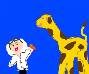 mad scientist feeding a giraffe