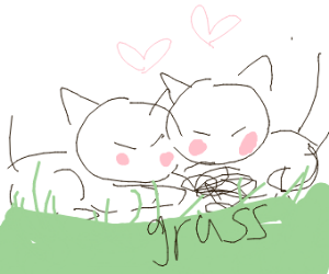 two foxes cuddling in the grass