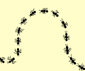 A line of Bugs