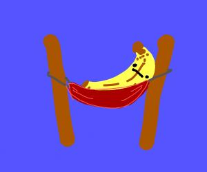banana in a hammock