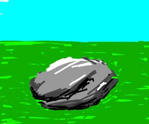 detailed rock