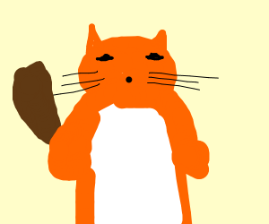 An orange cat fox beaver thing