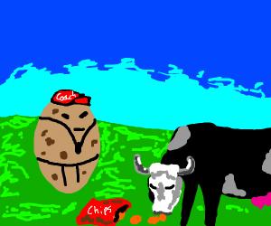 coach potato cow eating potato chips