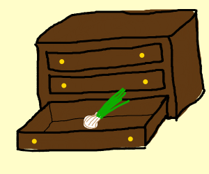 drawer onion