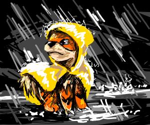 A pokemon in a raincoat