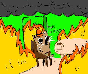 this is fine but its a cat