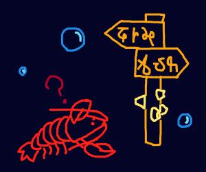 Lobster lost at Sea