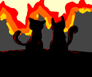 the 2 cats watched as the city burnt down