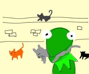 buff kermit kills cat