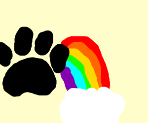 Paw print in front of a rainbow