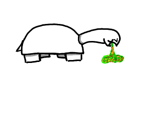 Turtle Puking