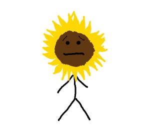Worried Sunflower Stickman