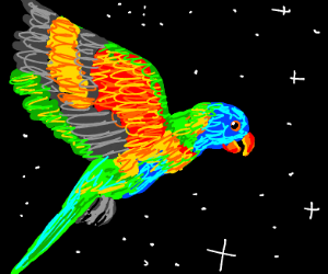 Rainbow bird in space.