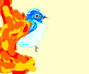 evil bluebird covered in lava