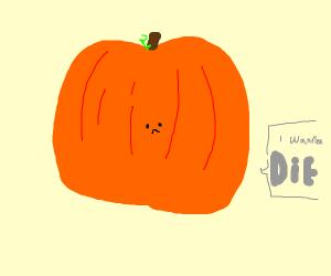 Pumpkin wants to die