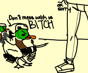 dont mess with the duck army
