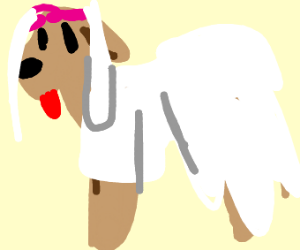 Dog in a wedding dress