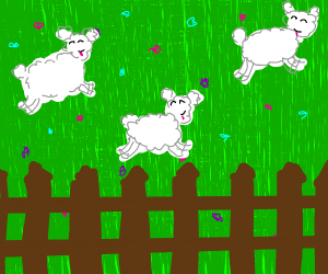 whites sheep frolicking in pasture