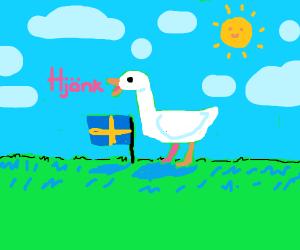 Hjonk Hjonk swedish goose