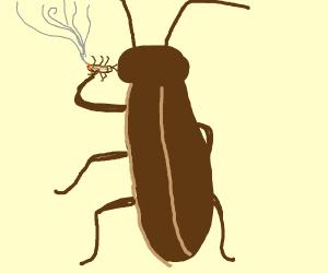 a roach smoking a roach