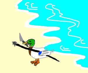 Duck Hunt on the beach