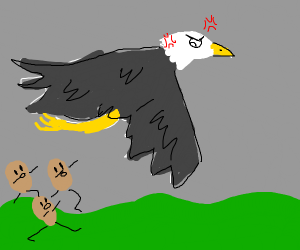 eagle wants beans to stop following him